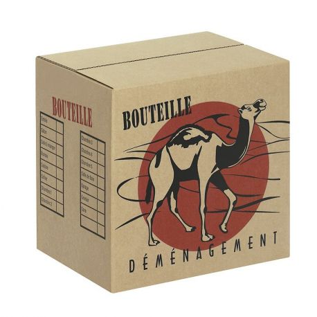 Carton 'BOUTEILLES' x12